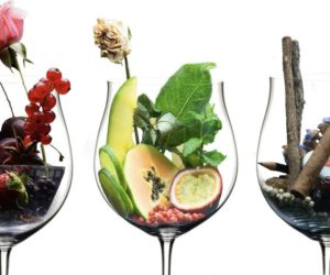 Clasificación de los aromas del vino por familias y tipo